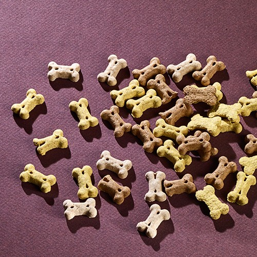 Training Dog Treats